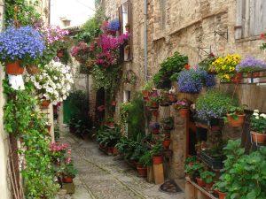 Spello - vakantie in Umbrië